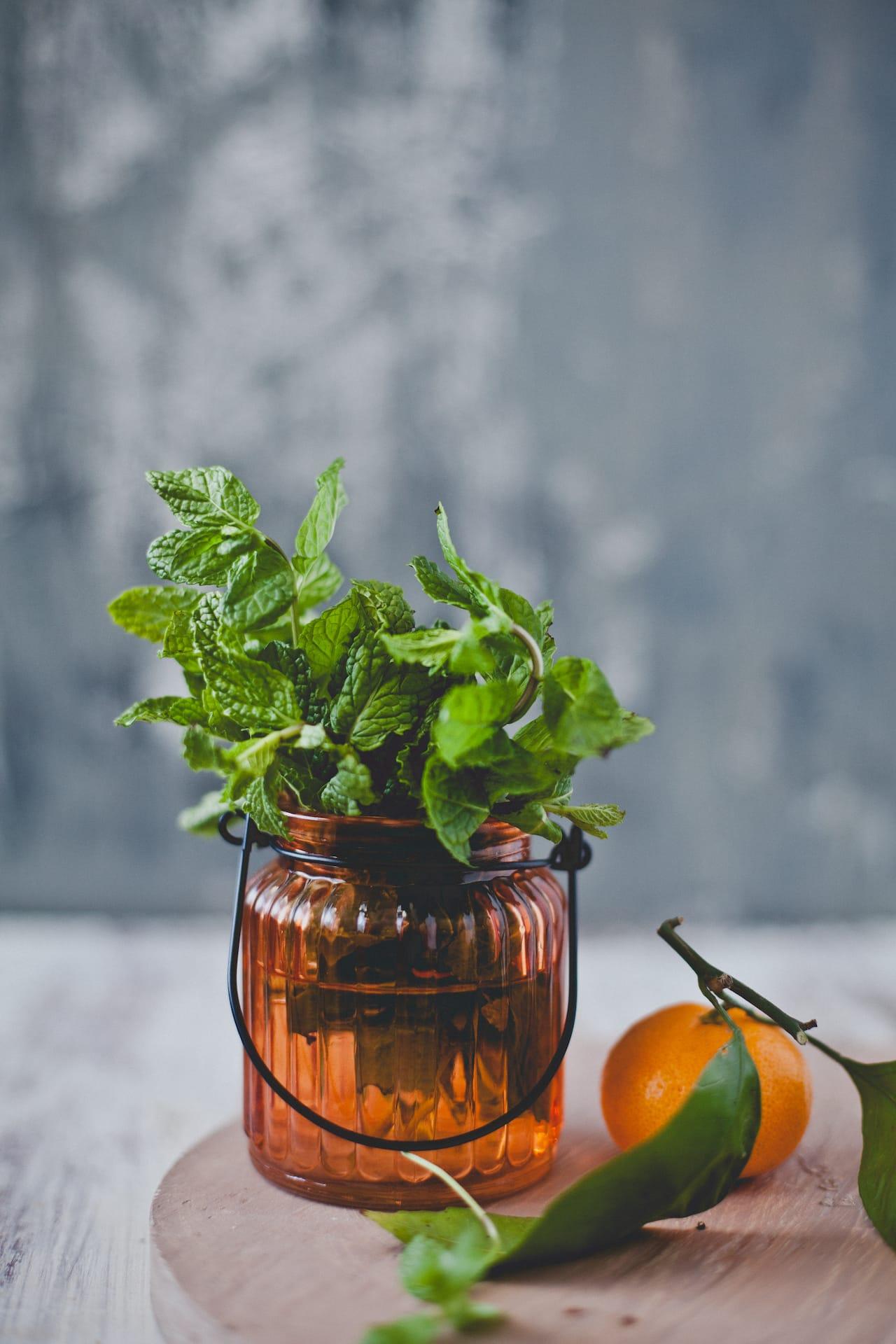Fresh Mint | Playful Cooking