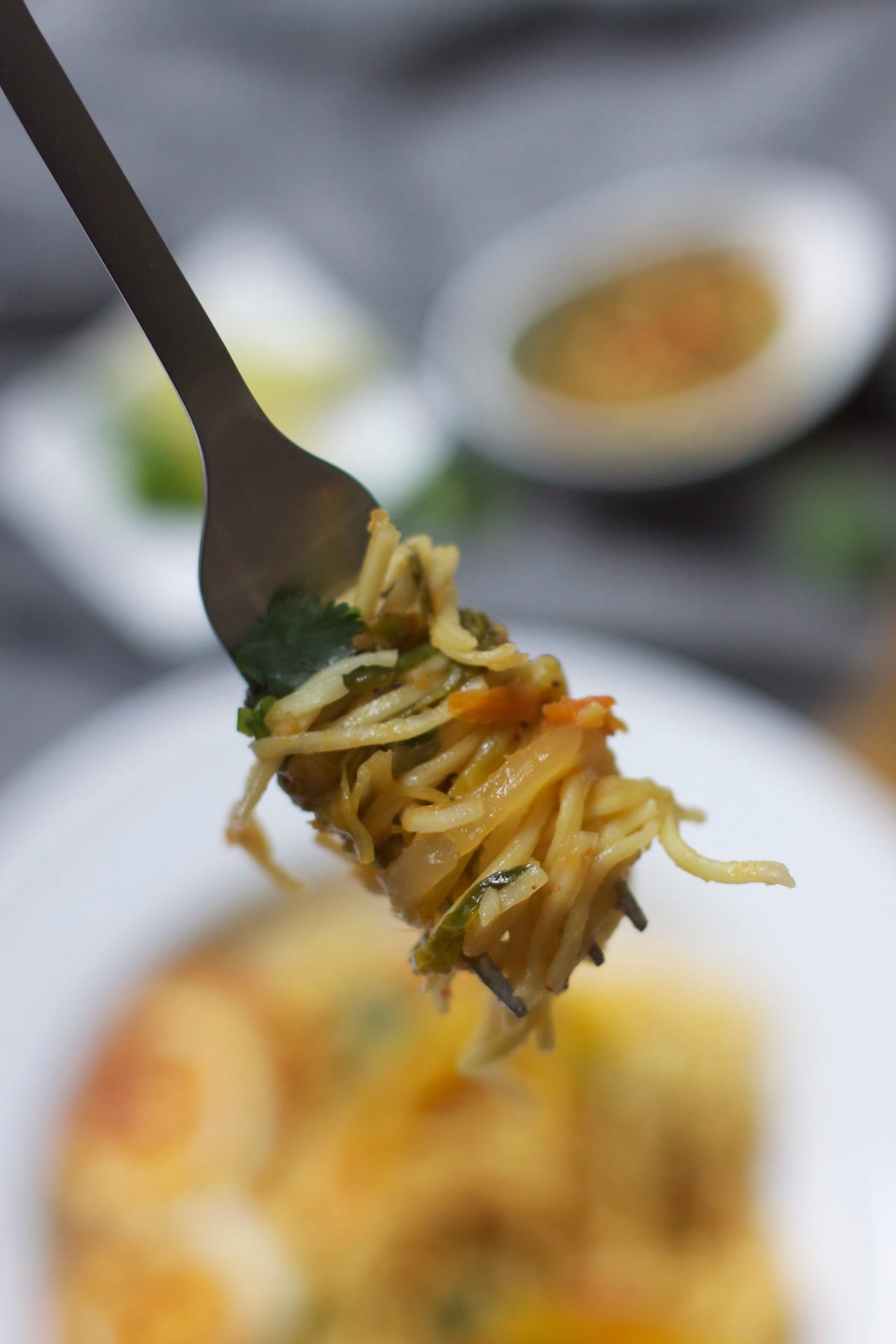 Egg Hakka Noodle 3