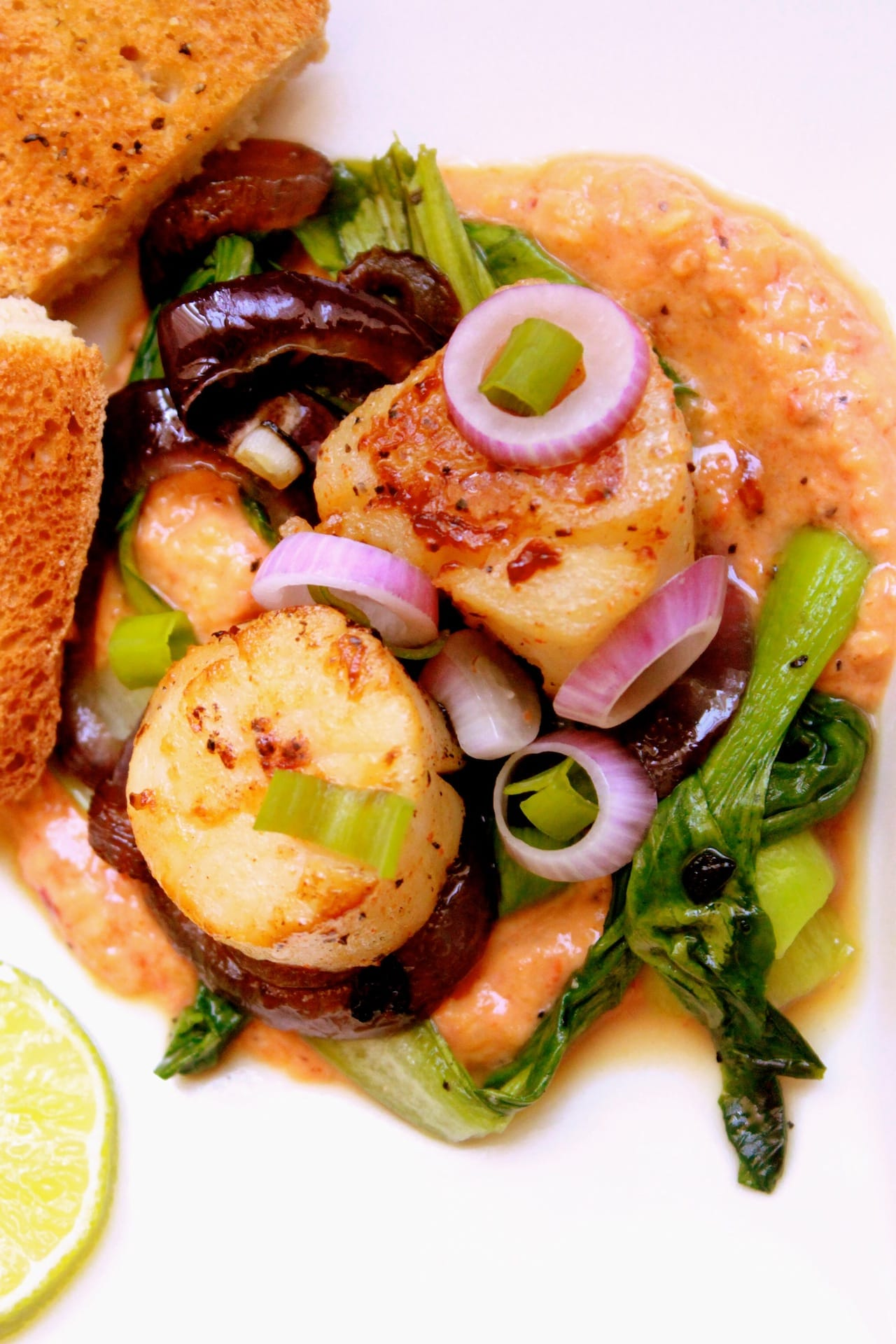 Scallops with Corn and Pepper Sauce 5