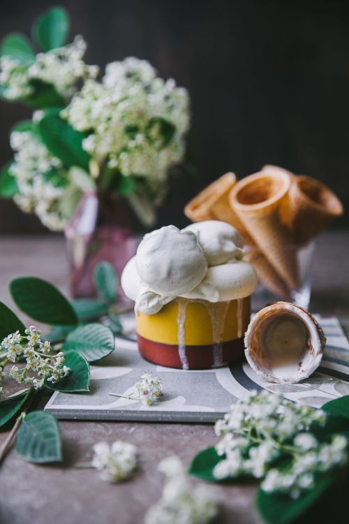4 ingredients Vanilla Ice Cream (WITH and WITHOUT machine) #playfulcooking #icecream #vanilla #foodphotography #easy #dessert